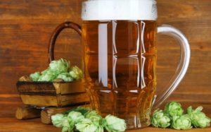Выбор хмеля для пива