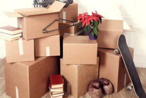 Картонная упаковка: технология производства, преимущества, назначение