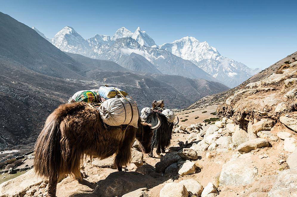 Скромный Непал между Китаем и Индией.