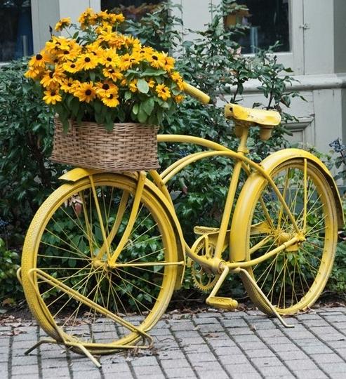 Красивая клумба на велосипеде