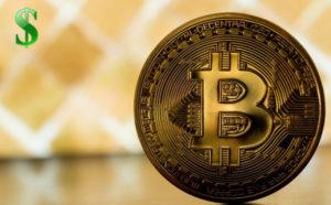 Нужно ли инвестировать в криптовалюты?